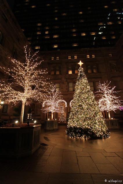 Albero di Natale al New York Palace-New York