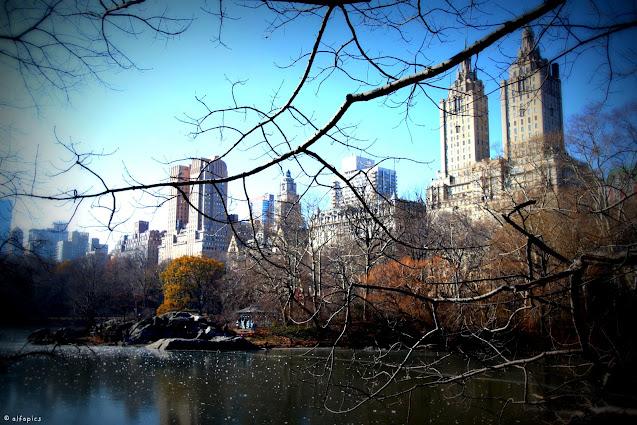 Vista sui grattacieli da Central park-New York