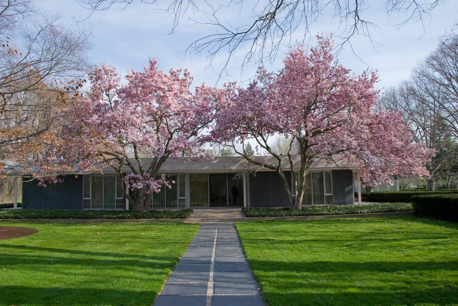 Eero Saarinen S Miller House Livemodern Your Best Modern Home