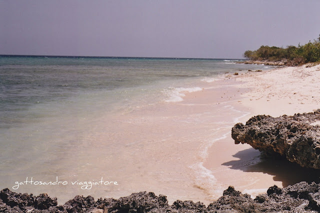 Playa de l'amor
