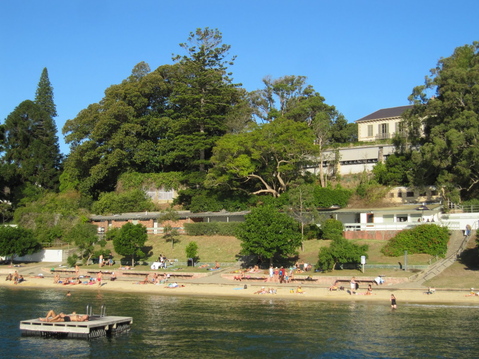 Sydney City And Suburbs Double Bay Murray Rose Pool
