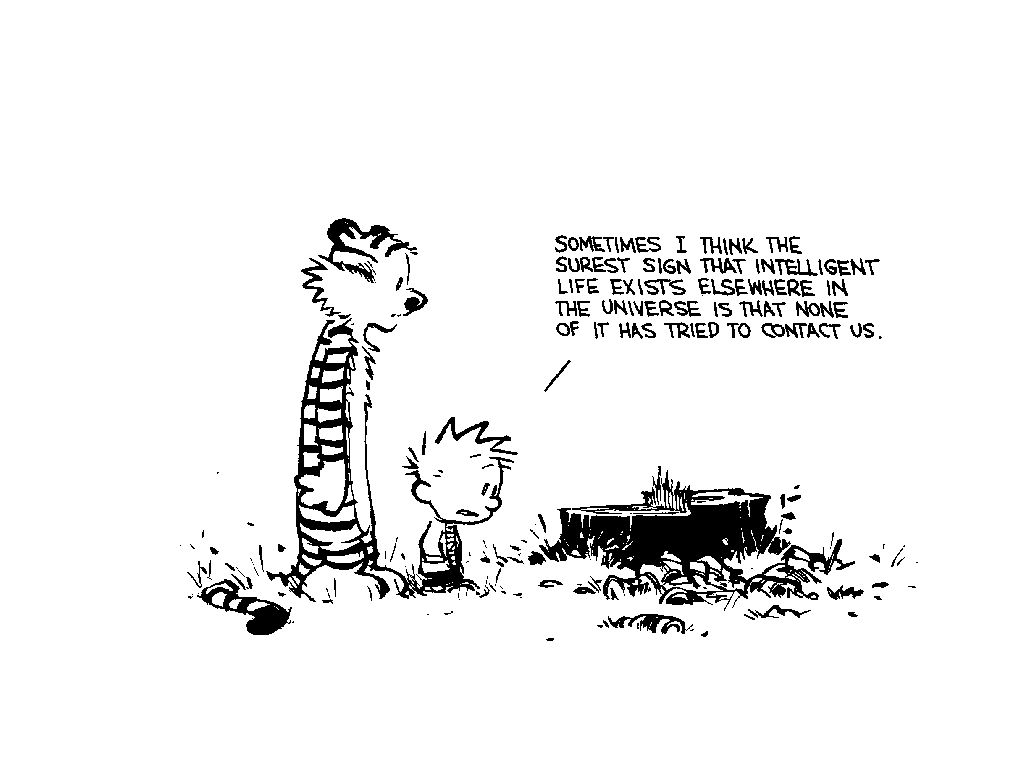 sporadic meditations: Calvin and Hobbes Comics