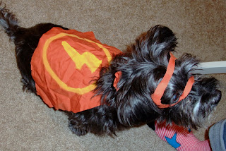 DIY Halloween Dog Costume