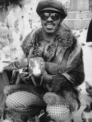 Singer/songwriter Stevie Wonder