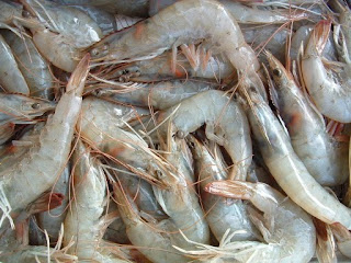 A London Fishmonger Which Prawn A Simple Guide