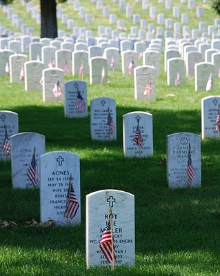 Graves at Arlington National Cemetary on                 Memorial Day