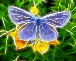 Digital Butterfly wallpaper