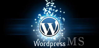 The Importance of Wordpress as a CMS