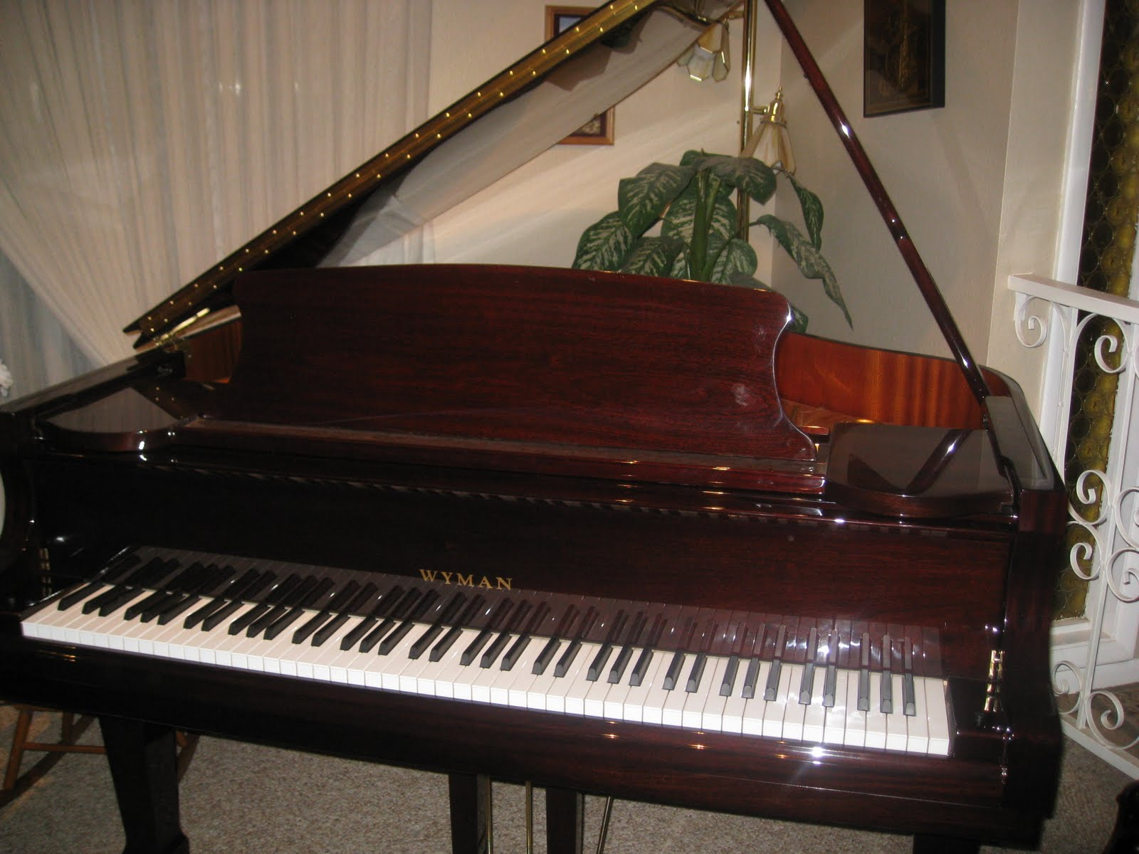az piano reviews digital keyboard vs digital piano review. Black Bedroom Furniture Sets. Home Design Ideas