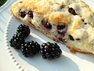 Cave Cibum Blackberry Scones