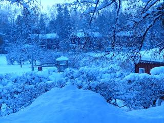 K L U B I: Talvipäivänseisaus!