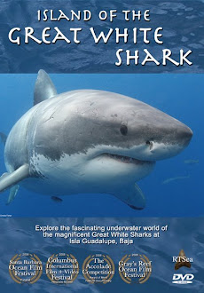 Shark Films Of Note