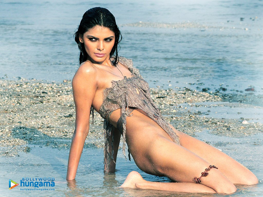 Sherlyn Chopra Nude Photos  Hot Backgrounds-5269