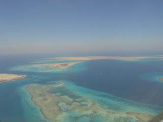 Carbon-Based: Egypt oil spill threatens Red Sea marine life