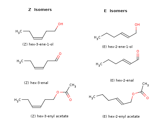 Pin Constitutional Isomers Of Octane on Pinterest
