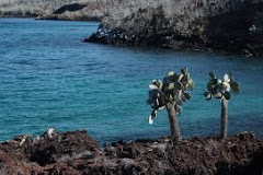 In the Galapagos