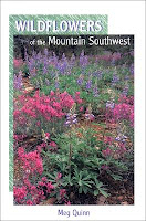 Wildflowers of the Mountain Southwest