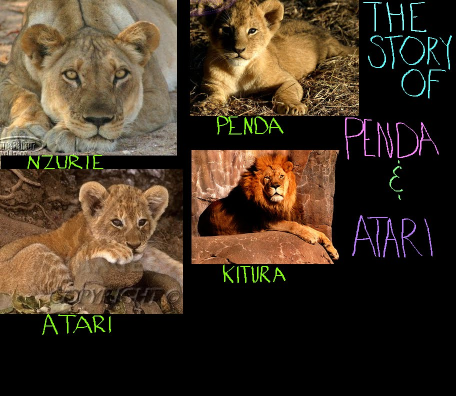 The Story of Penda and Atari