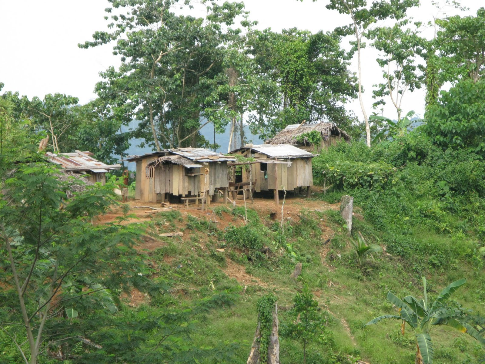 Image of a cluster of houses in rural Philippines