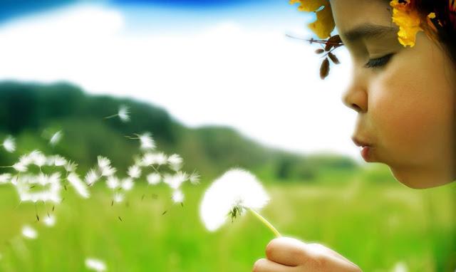 Que O Otimismo O Desperte Com A Disposição Certa Para Um: Cantinho Da Ro.: Agosto 2012