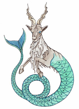 My sign 1: Capricorn