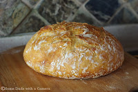 Rustic No Knead Bread