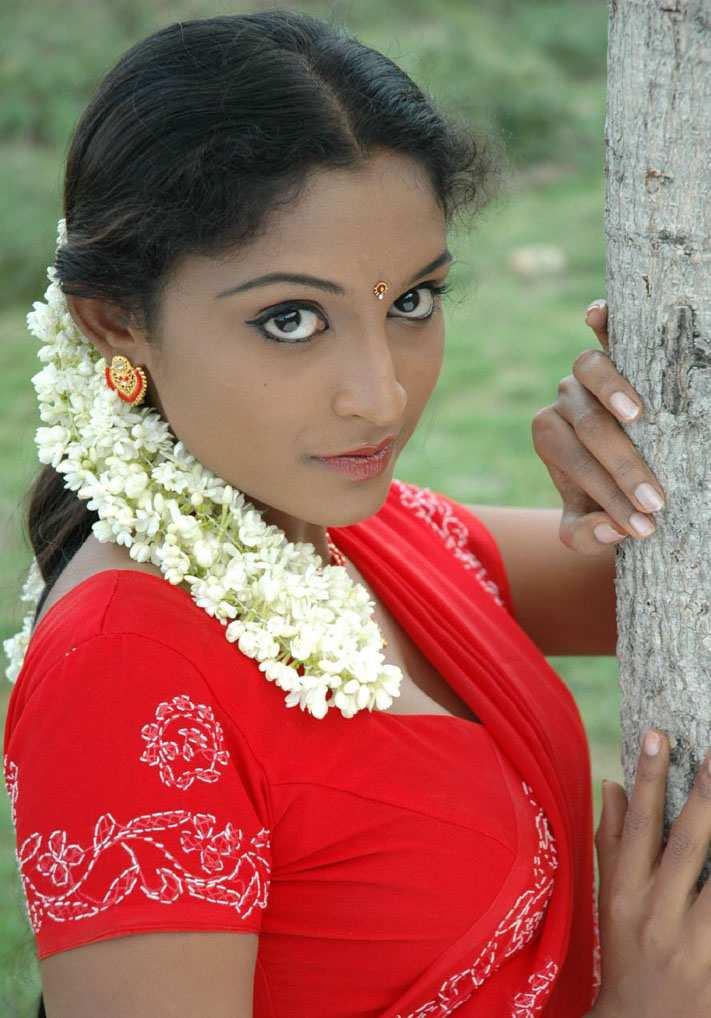 Saree Navel: South Saree Navel