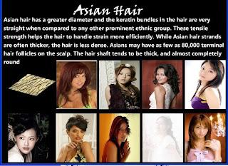 Nude virgin brazilian hair by model model