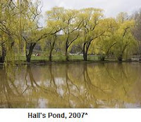 Photo: Hall's Pond, 2007