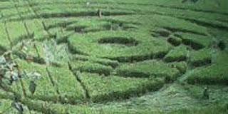 Pola aneh crop circle