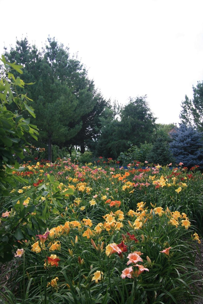 Conrad Art Glass Gardens Creating An Effective Mass Planting Of