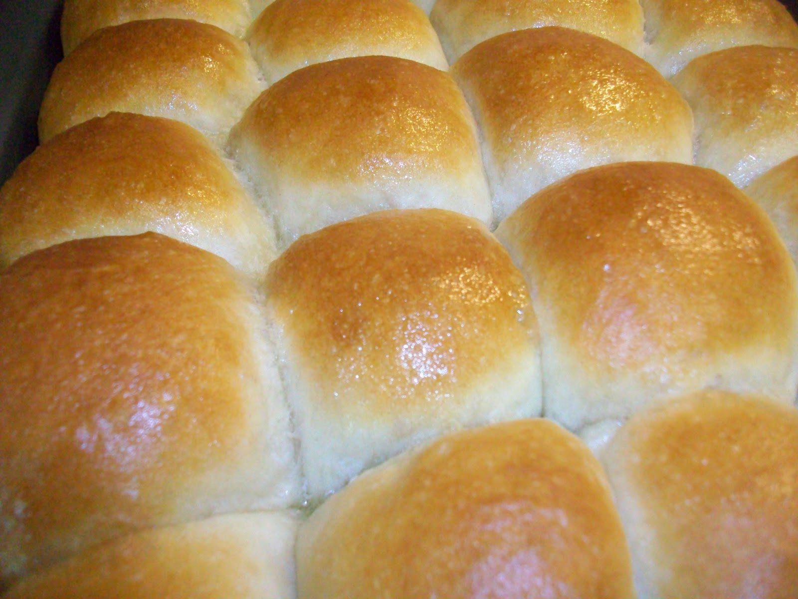 At Home With Haley Perfect Dinner Rolls