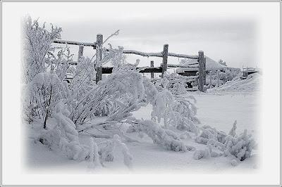 Зимние мотивы сельского пейзажа.