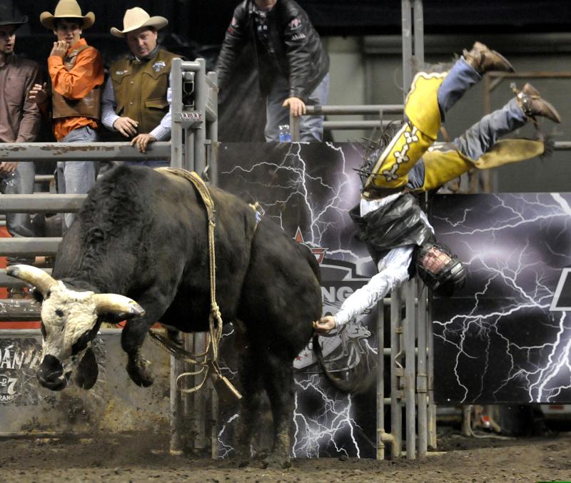 Darren Breen S Photo Blog Bull Riding