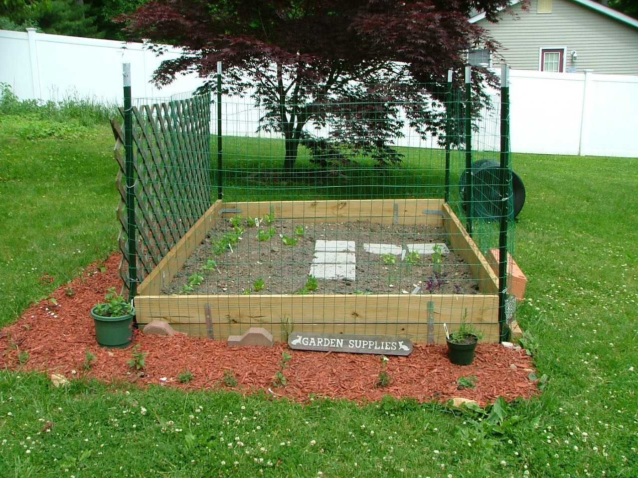 vegans living off the land raised bed garden ideas using free with elevated raised garden beds plans