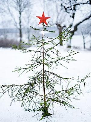 A Good Tree