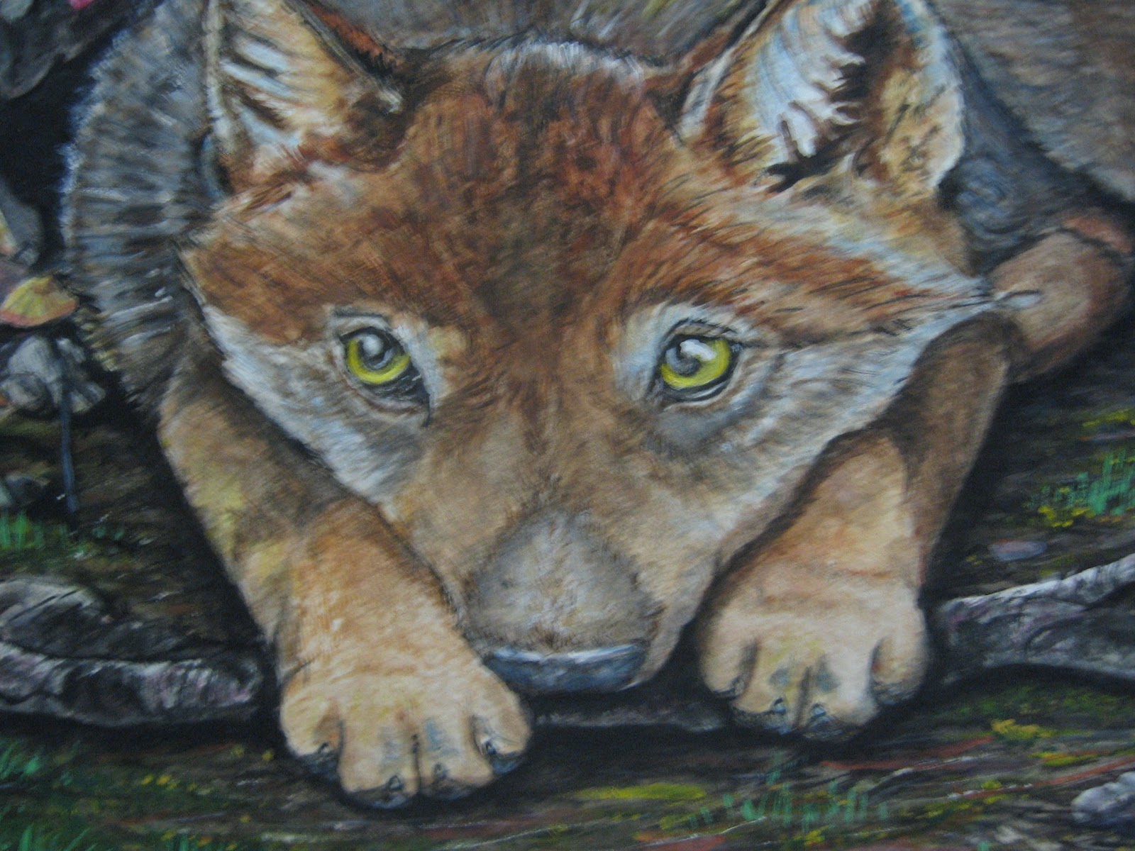 Chelsie Wolf