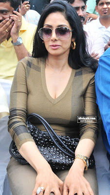 Paparazzi Boobs Sridevi (Now Sridevi Kapoor)  nude (42 photo), Facebook, braless