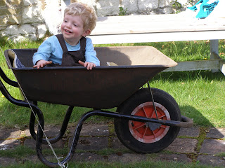 Alex in a wheelbarrow