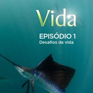 Vida - Episódio 1: Desafios da Vida - DVDRip Legendado