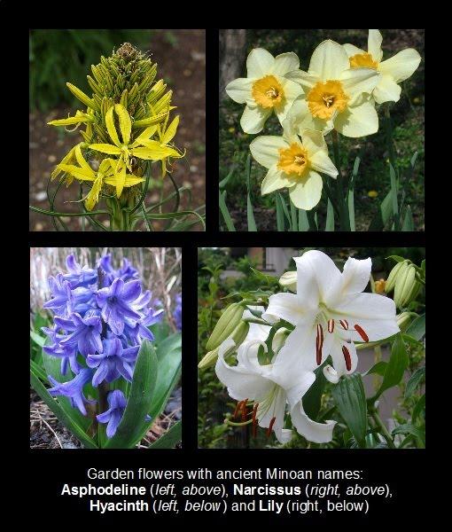 Minoan Language Blog Flower Gardens Of Ancient Crete