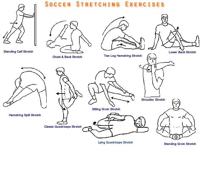 Different Types of Soccer Stretching Exercise