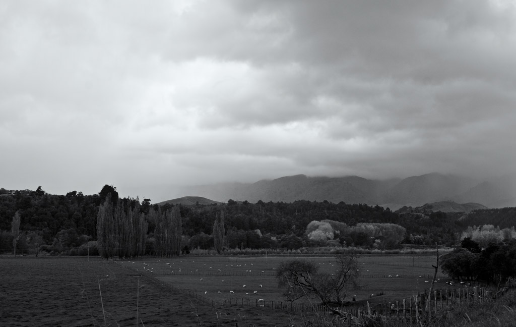 Rain, Pohangina Valley
