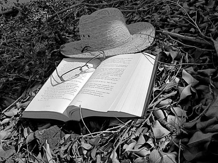 Marcela Linares Godinez: Sombrero En Hojas Blanco Y Negro