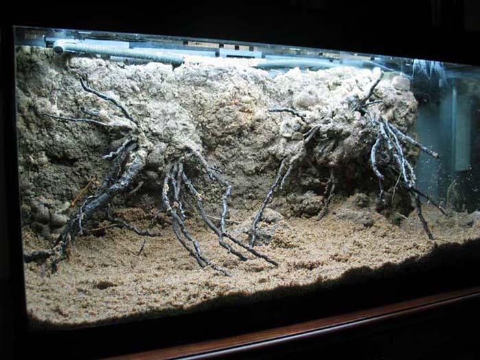 bild aquarium anzeigen wallpapers - photo #14