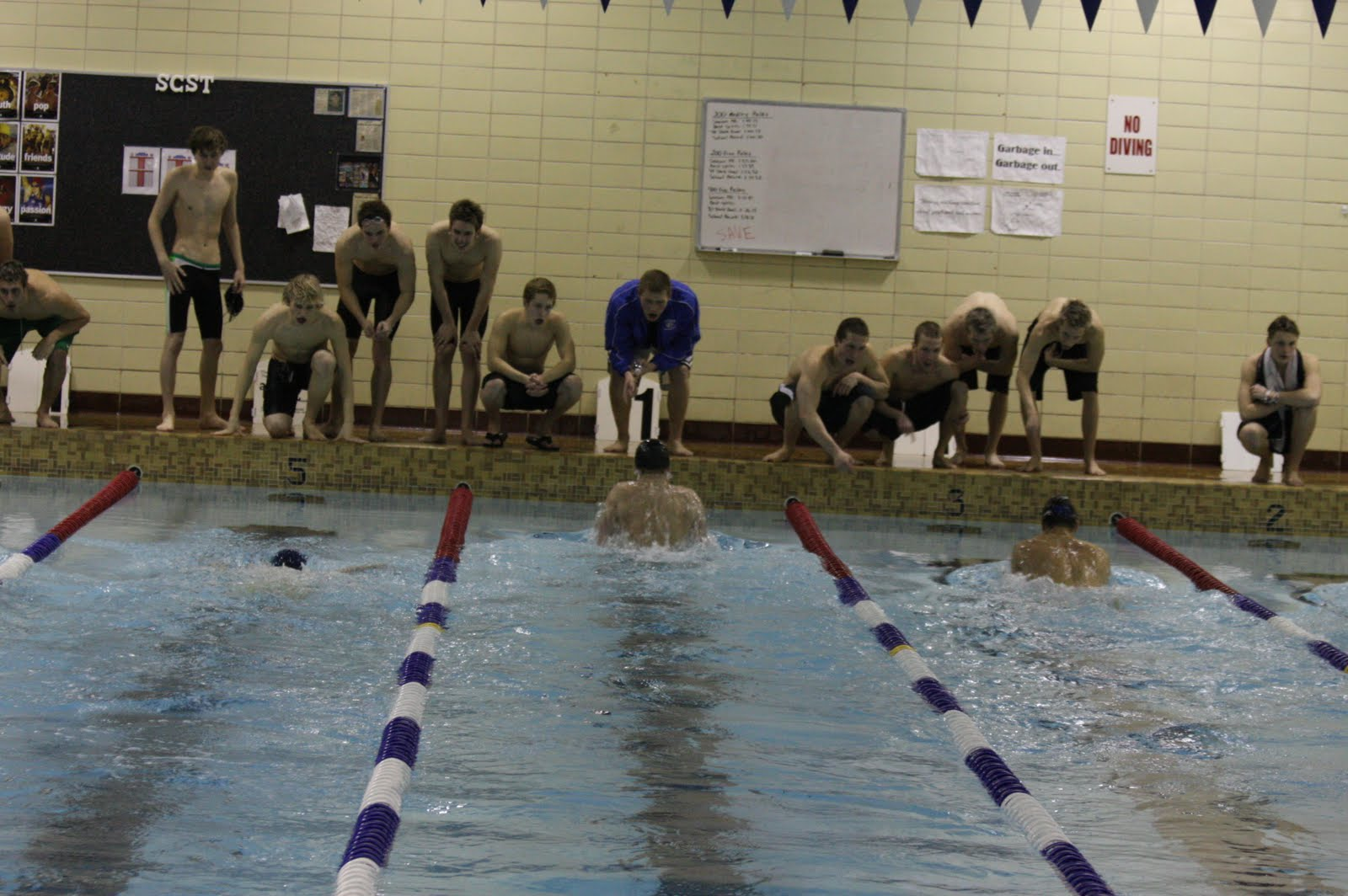alex moser memorial swim meet