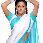 Padmapriya Sexy In Saree