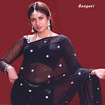 Actress Transparent Saree