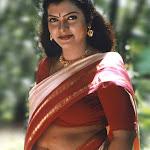 Sajini Hot Neval Show In Saree