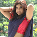 Vandhana Clevage And Neval Show